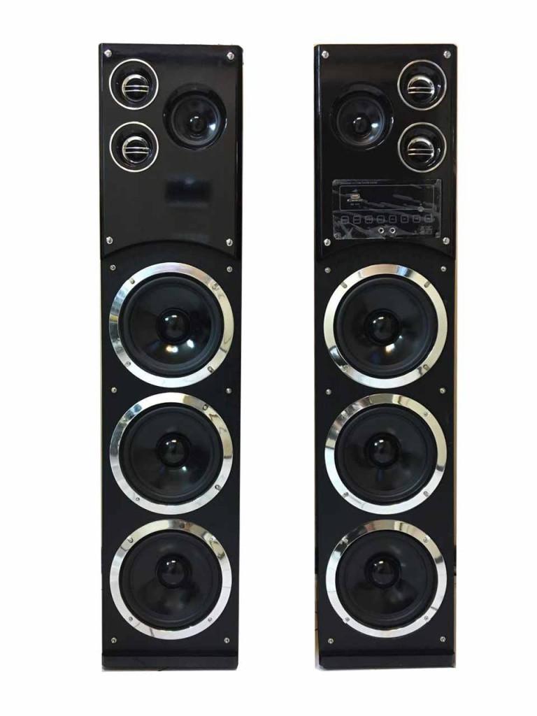 اسپیکر دو تیکه حرفه ای داتیس مدل 8010