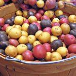 خواص بیشمار سیب زمینی برای سلامت بدن!